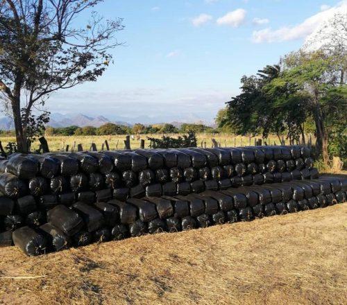 Bolsas-para-silo-de-50-60-kilos.jpg